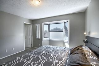 Photo 21: 2115 24 Avenue NE in Calgary: Vista Heights Detached for sale : MLS®# A1018217