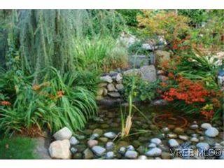 Photo 16: 466 Constance Ave in VICTORIA: Es Esquimalt House for sale (Esquimalt)  : MLS®# 510462