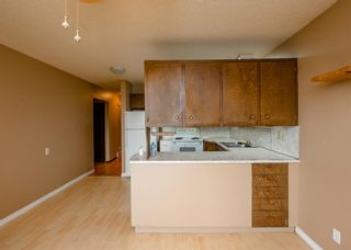 Photo 11: 141 40th Avenue SW in Calgary: Parkhill Detached for sale : MLS®# A1107597