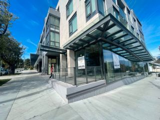 """Photo 6: 3151 DUNBAR Street in Vancouver: Dunbar Office for lease in """"The Grey"""" (Vancouver West)  : MLS®# C8040688"""