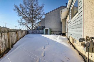 Photo 40: 57 Penworth Close SE in Calgary: Penbrooke Meadows Row/Townhouse for sale : MLS®# A1058735