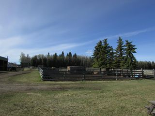 Photo 9: 15B-32579 Range Road 52: Rural Mountain View County Detached for sale : MLS®# A1106353