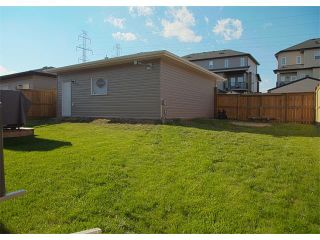 Photo 41: 185 Rainbow Falls Glen: Chestermere House for sale : MLS®# C4017404