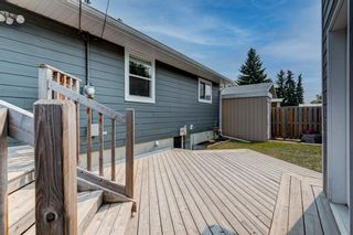 Photo 30: 6135 4 Street NE in Calgary: Thorncliffe Detached for sale : MLS®# A1134001