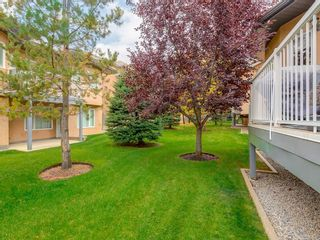 Photo 34: 27 SHANNON ESTATES Terrace SW in Calgary: Shawnessy Semi Detached for sale : MLS®# C4205904