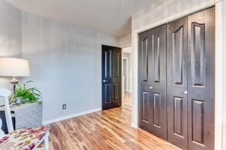 Photo 23: 226 Canoe Drive SW: Airdrie Detached for sale : MLS®# A1129896