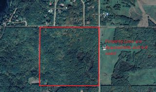 Main Photo: Twsp 533 Range Road 60: Rural Parkland County Rural Land/Vacant Lot for sale : MLS®# E4257906