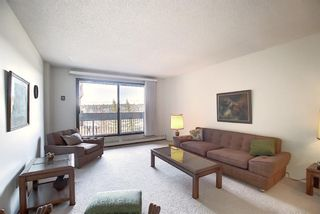 Photo 5: 505 9800 Horton Road SW in Calgary: Haysboro Apartment for sale : MLS®# A1060584