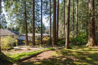 Photo 16: 2408 HYANNIS Drive in North Vancouver: Blueridge NV House for sale : MLS®# R2569474