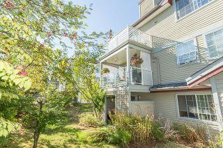 """Photo 20: 37 11502 BURNETT Street in Maple Ridge: East Central Townhouse for sale in """"TELOSKY VILLAGE"""" : MLS®# R2201064"""