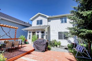 Photo 41: 690 Coventry Drive NE in Calgary: Coventry Hills Detached for sale : MLS®# A1144228