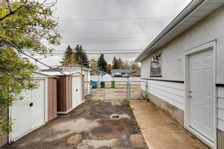 Photo 31: 2408 39 Street SE in Calgary: Forest Lawn Detached for sale : MLS®# A1139948