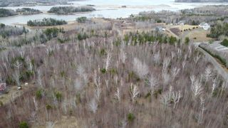 Photo 6: Lot 12 Pictou Landing Road in Little Harbour: 108-Rural Pictou County Vacant Land for sale (Northern Region)  : MLS®# 202106888