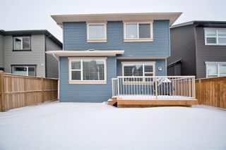 Photo 38: 10 Kingsbury Close SE: Airdrie Detached for sale : MLS®# A1059549