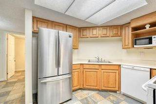 Photo 11: 201 2425 90 Avenue SW in Calgary: Palliser Apartment for sale : MLS®# A1052664