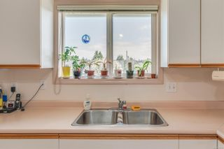 Photo 17: 629 Judah St in : SW Glanford House for sale (Saanich West)  : MLS®# 874110