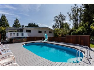 Photo 18: 34271 CATCHPOLE Avenue in Mission: Hatzic House for sale : MLS®# R2200200