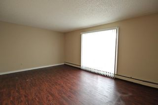 Photo 17: 5501 37 Street: Red Deer Multi Family for sale : MLS®# A1130594