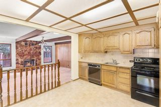 Photo 32: 540 48 Avenue SW in Calgary: Elboya Detached for sale : MLS®# A1059690