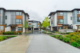 """Photo 20: 38 8508 204 Street in Langley: Willoughby Heights Townhouse for sale in """"Zetter Place"""" : MLS®# R2308737"""