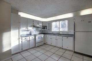 Photo 9: 451 Lysander Drive SE in Calgary: Ogden Detached for sale : MLS®# A1053955