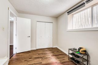 Photo 23: 114 Dovertree Place SE in Calgary: Dover Semi Detached for sale : MLS®# A1071722