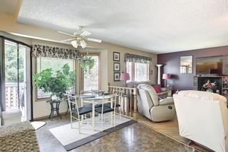 Photo 14: 48 Riverview Mews SE in Calgary: Riverbend Detached for sale : MLS®# A1129355