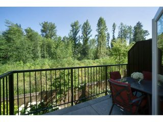 "Photo 19: 7 23709 111A Avenue in Maple Ridge: Cottonwood MR Townhouse for sale in ""FALCON HILLS"" : MLS®# R2192590"