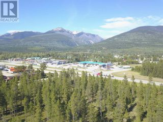 Photo 2: 1105 S 5 HIGHWAY in Robson Valley (Zone 81): Vacant Land for sale : MLS®# C8038838