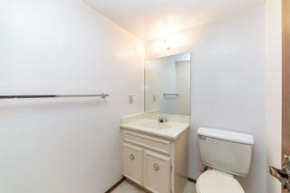 Photo 17:  in Edmonton: Zone 22 House for sale : MLS®# E4248753