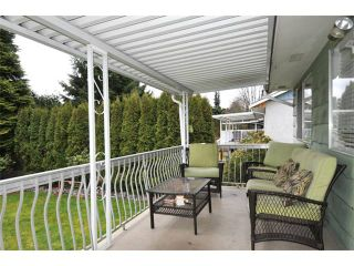 Photo 9: 21732 HOWISON Avenue in Maple Ridge: West Central House for sale : MLS®# V937040