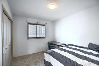 Photo 25: 23 Evanscove Heights NW in Calgary: Evanston Detached for sale : MLS®# A1063734