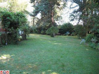 Photo 10: 19616 80TH AV in Langley: House for sale : MLS®# F1020546