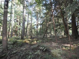 Photo 18: 1239/1241 VANCOUVER BLVD in Savary Island: Vacant Land for sale : MLS®# 16136