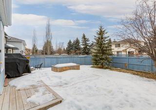 Photo 44: 37 Douglasbank Rise SE in Calgary: Douglasdale/Glen Detached for sale : MLS®# A1079543