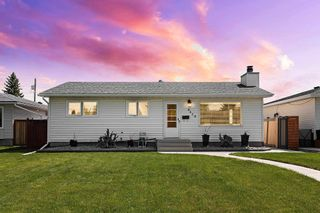 Photo 1: 8419 52 Street in Edmonton: Zone 18 House for sale : MLS®# E4246813