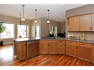 Photo 10: 36 Silvertip Gate: Rural Foothills M.D. House for sale : MLS®# C4102875