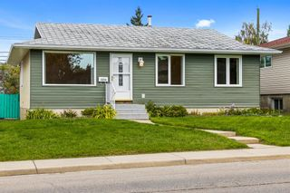 Photo 29: 3320 Dover Ridge Drive SE in Calgary: Dover Detached for sale : MLS®# A1141061