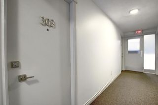 Photo 4: 303 215 25 Avenue SW in Calgary: Mission Apartment for sale : MLS®# A1063932