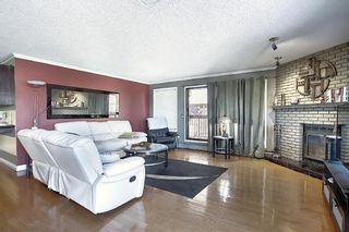 Photo 10: 806 320 Meredith Road NE in Calgary: Crescent Heights Apartment for sale : MLS®# A1106312
