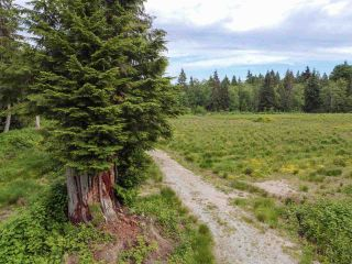 """Photo 37: 1900 PORT MELLON Highway in Gibsons: Gibsons & Area House for sale in """"Williamsons Landing"""" (Sunshine Coast)  : MLS®# R2447913"""