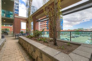 Photo 31: 205 1410 1 Street SE in Calgary: Beltline Apartment for sale : MLS®# A1109879