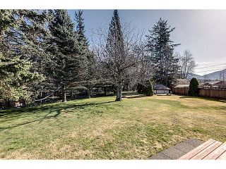 """Photo 14: 41550 GOVERNMENT Road in Squamish: Brackendale House for sale in """"BRACKENDALE"""" : MLS®# V1051640"""