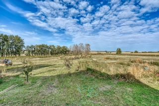 Photo 15: 242047 Township Road 262: Rural Wheatland County Detached for sale : MLS®# A1036253