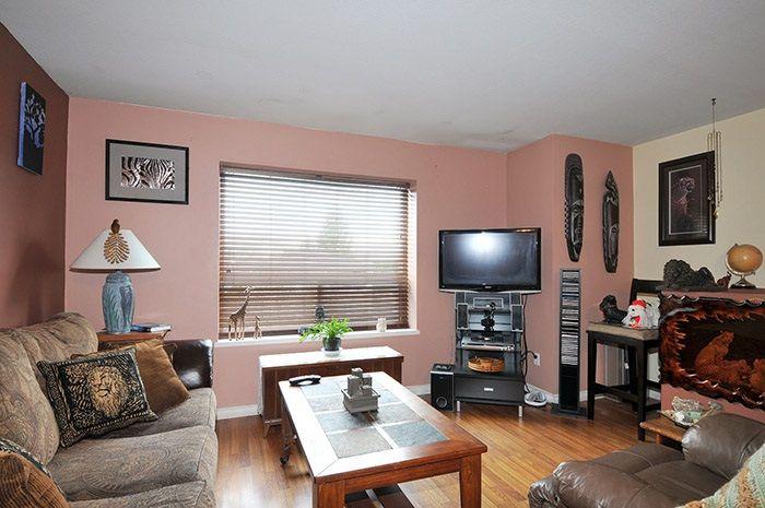 Main Photo: 11382 MELVILLE Street in Maple Ridge: Southwest Maple Ridge House for sale : MLS®# R2029304