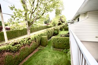 Photo 30: 52 3054 Trafalgar Street in Abbotsford: Central Abbotsford Townhouse for sale : MLS®# R2578031