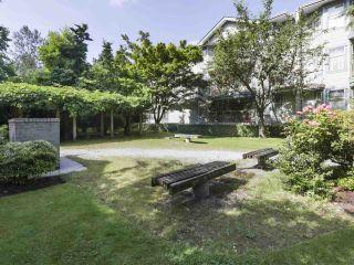 """Photo 19: 311 10743 139 Street in Surrey: Whalley Condo for sale in """"VISTA RIDGE"""" (North Surrey)  : MLS®# R2468543"""