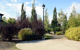 Photo 2: 212 2584 Anderson Way SW in Edmonton: Zone 56 Condo for sale : MLS®# E4262336