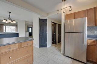 Photo 13: 5308 - 203 Street in Edmonton: Hamptons House for sale : MLS®# E4153119