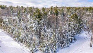 Photo 12: Lot 16 Seafox Road in Conquerall Bank: 405-Lunenburg County Vacant Land for sale (South Shore)  : MLS®# 202102353